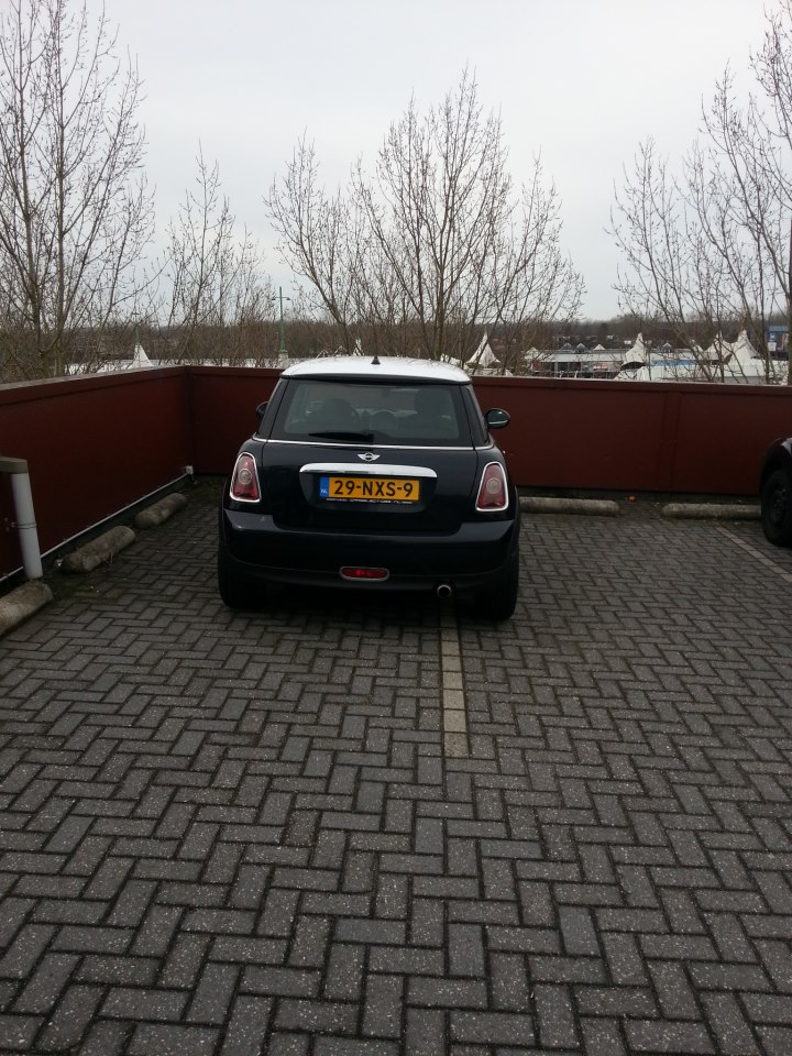 Parking Prick Mini