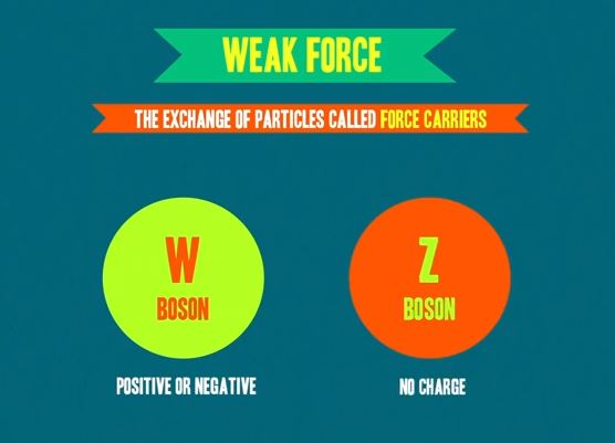 Science Saturday - Weak Force