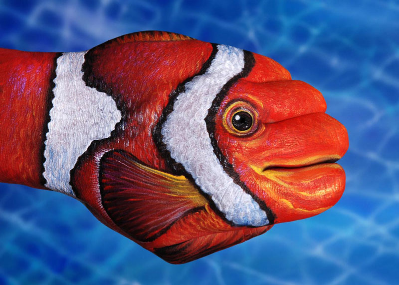 Animal-Hand-Paintings-by-Guido-Daniele-Clown-Fish