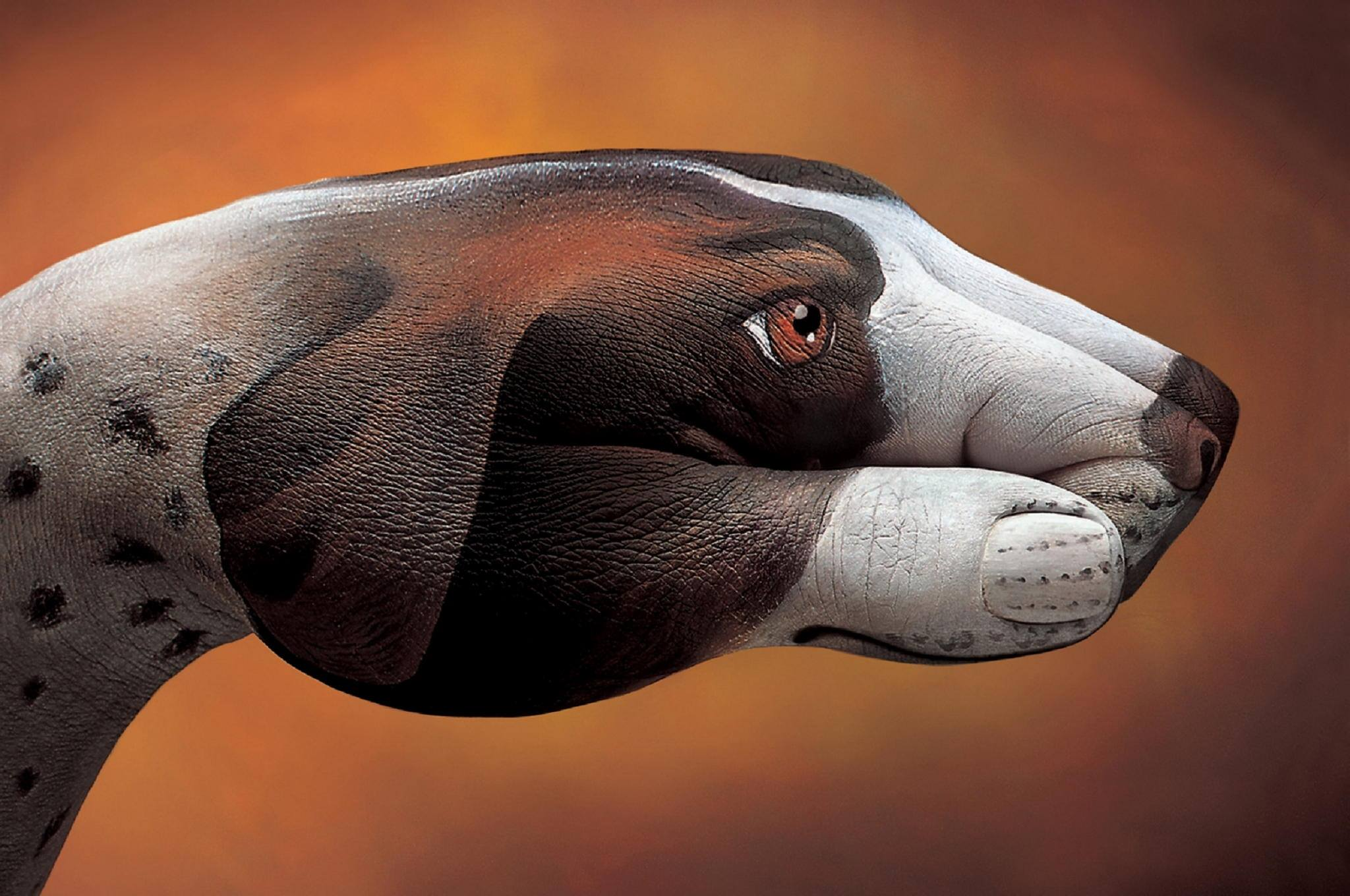 Animal-Hand-Paintings-by-Guido-Daniele-Dog