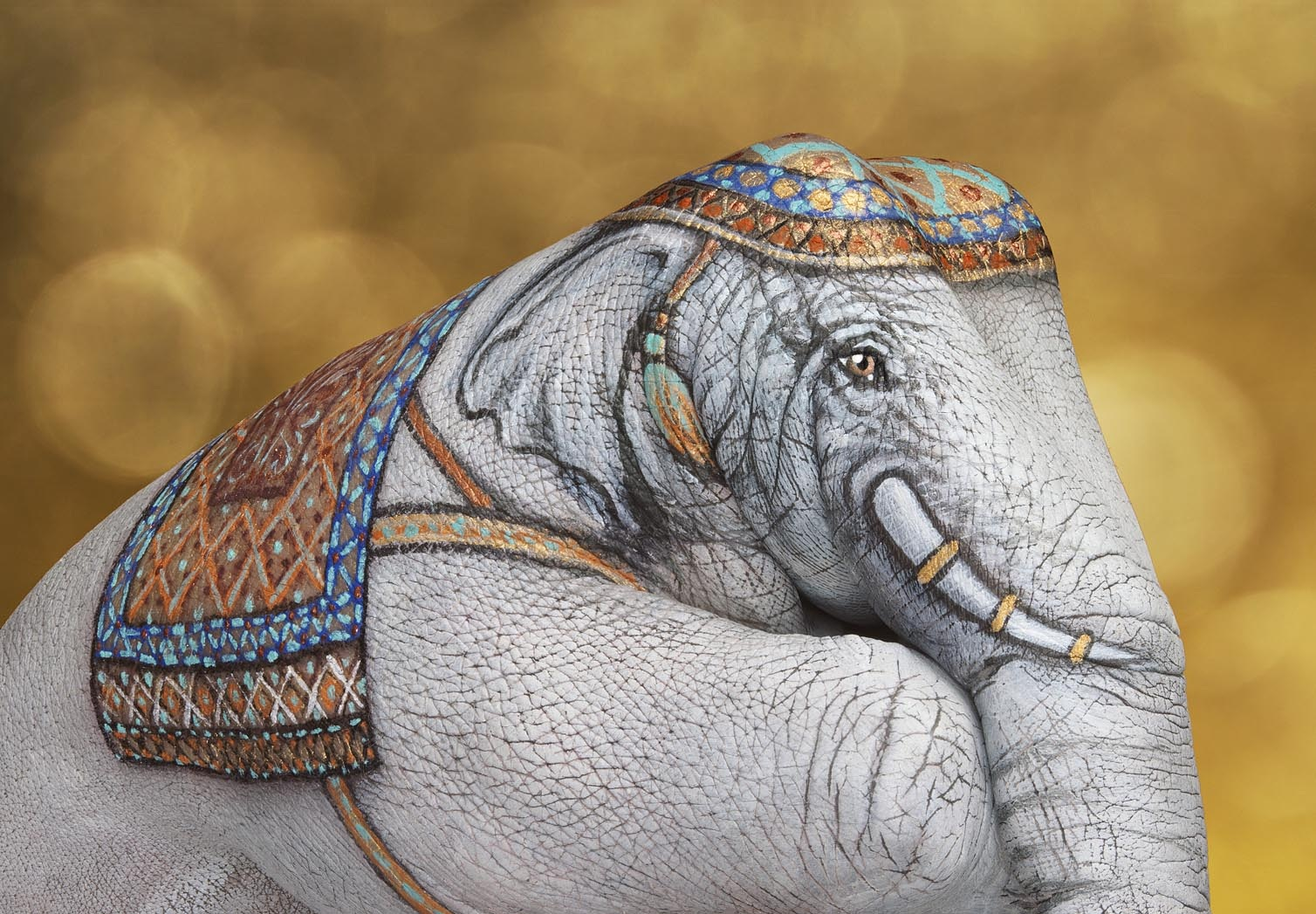 Animal-Hand-Paintings-by-Guido-Daniele-Elephant-India