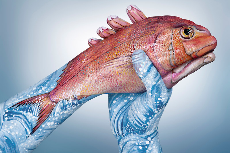 Animal-Hand-Paintings-by-Guido-Daniele-Sea-Bream